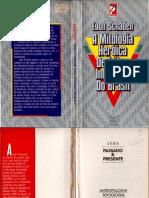 Schaden_1988_AMitologiaHeroicaTribosBr.pdf
