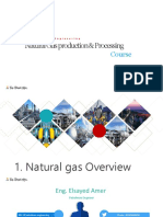 1. Natural Gas Overview from AONG website.pdf