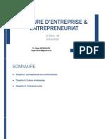 culture entreprise & entrepreneuriat chapitre I.pdf