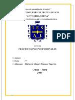 INFORME DE PRACTICAS PREPROFESIONALES DE ENFERMERIA.docx