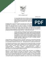Passo 1.pdf