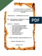resumen de ivermectina2 gabancho-convertido.pdf