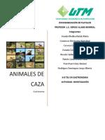 INVESTIGACIÓN ANIMALES DE CAZA