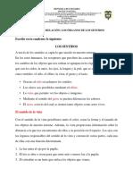 2. FUNCIÓN DE RELACIÓN ÓRGANOS DE LOS SENTIDOS parte 1
