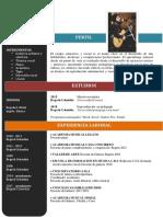 Curriculum-vitae Diego A. Fuertes