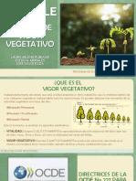 ENSAYO DE VIGOR VEGETATIVO