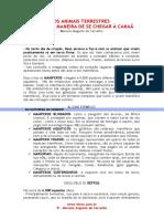 SM0002-08-A_MELHOR_MANEIRA_DE_CHEGAR_A_CANAA-GENESIS_1.24-25