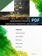 MACRO Y MICRO NUTRIENTES.pdf