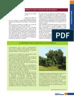 """DIOS FUE PRIMERO EN DECIR, """"VOSOTROS SOIS MIS AMIGOS"""".pdf"""