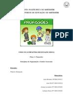 planificação profissões para o pré-escolar