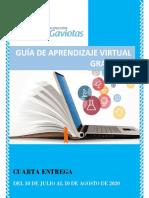 Guia de aprendzaje virual grado  10