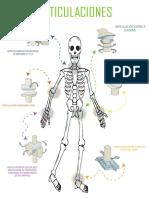 cuerpo humano (1).pdf