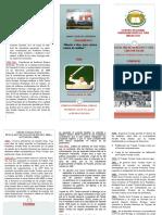 Triptico de DERECHO INTERNACIONAL PUBLICO