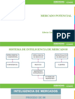 Mercado Potencial (1).pdf