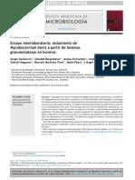 AISLAMIENTO  DE   MYCOBACTERUM  BOVIS (3)_compressed