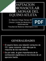 Cardiovascular y Respiratorio - Mauricio Ortega