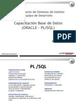 Capacitacion Base de Datos (ORACLE_PL-SQL).ppt
