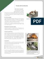 128109286-Teorias-de-La-Evolucion.pdf