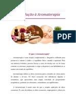 1- Introdução.pdf