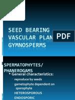 BOT 3:Gymnosperms