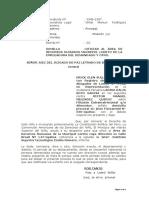 OFICIAR A RR.HH PNP- LARISA