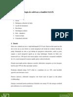 Tehnologia_de_cultivare