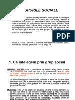 Cursul no.2 Grupuri sociale 21 octmbrie 2010
