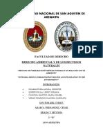 PROYECTO DE INVESTIGACION DERECHO AMBIENTAL