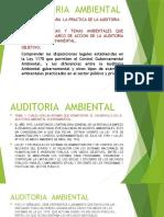 AUDITORIA  AMBIENTAL FEBRERO DEL 2020.pptx