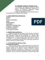 Sugerencias para elaboracion de informe psicoeducativo