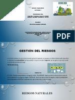 Riesgos financieros presentacion