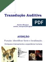 Audição_vet 2018 (1)