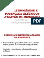 BIOELETROGÊNESE 2018-2