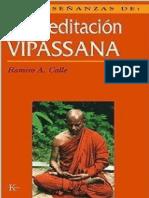Calle Ramiro A - Las Ensenanzas De La Meditacion.pdf