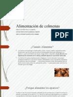 Alimentación de colmenas.pptx