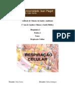 relatorio bioquimica