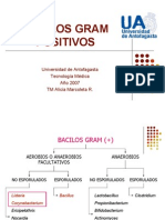 BACILOS G (+) II