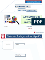 PPT PLANTILLA DE SUSTENTACIÓN