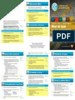SpanishRecordCard_Guide_web (2020_07_18 17_27_12 UTC)