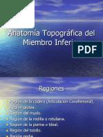 Anatomía Topográfica del Miembro Inferior