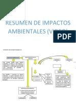 RESUMEN DE IMPACTOS AMBIENTALES