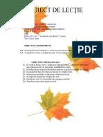 Aventurile unei frunze, proiect de lecție la Limba și literatura romana