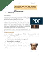 Tema 15. Hirsutismo y virilización.docx