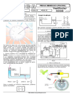 sistema hidraulico Pascoal.pdf