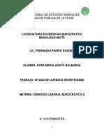 TRABAJO DERECHO BUROCRATICO PROFESOR FERNANDO