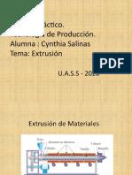 TP Nº 3 Extrusión  - Cynthia Salinas.pptx