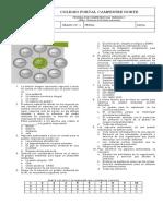 4._PC,_SGA_10°_2P_1 (1).docx