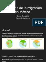 Problema de la migración en México