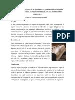 SEMINARIO 10 Patrimonio cultural
