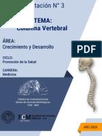 Ejercitación columna vertebral.pdf